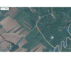 Vand 2500 mp teren in zona Oncea Paleu