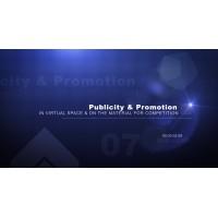 Publicitate si promovare